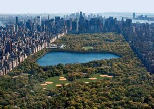 central-park-birds-eye-view